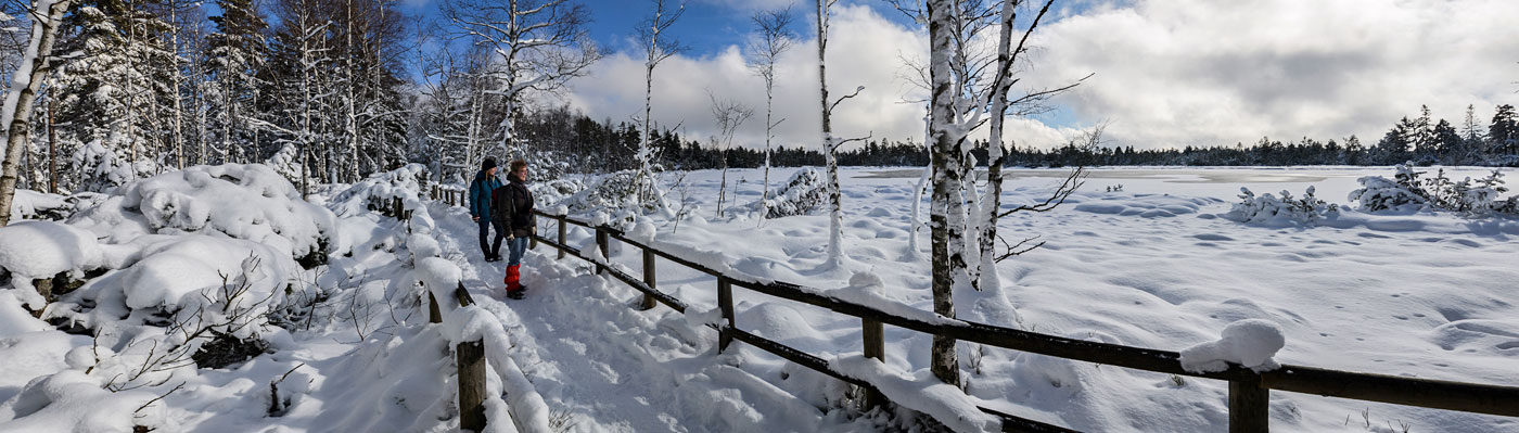 Winterwanderer am verschneiten Wildsee